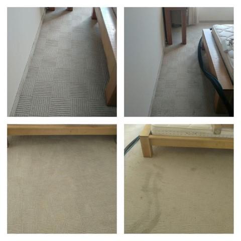 ניקוי שטיחים לפני ואחרי